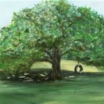 Join the Clarks Green Shade Tree Commission